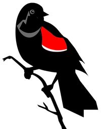 Redwing blackbird icon for FoH by Sam Pratt