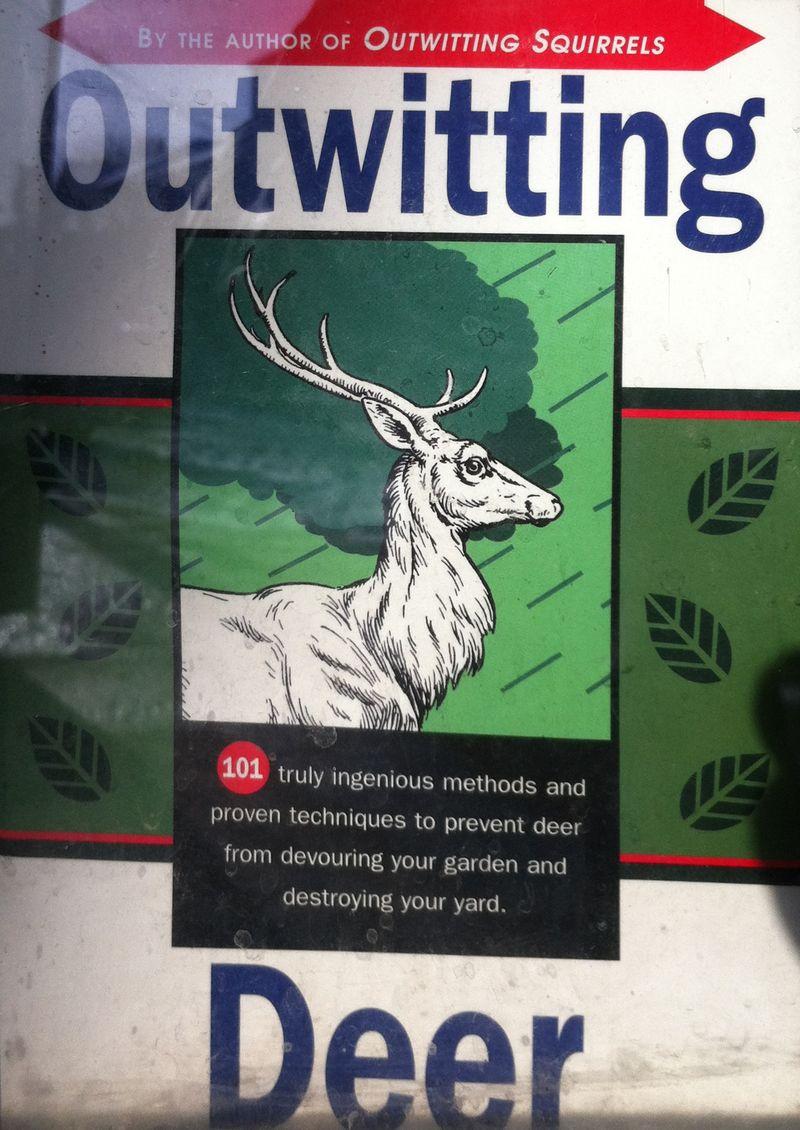 Outwittingdeer